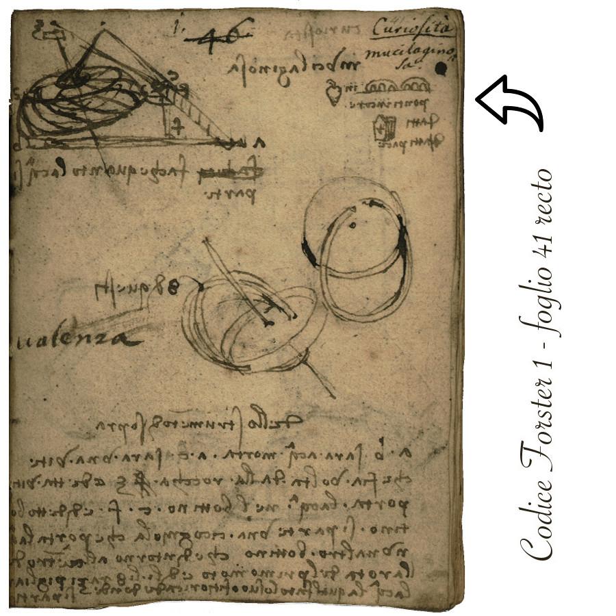 Codice Forster 1 - foglio 41 recto